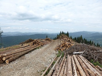 Tipy na výlety a voľný čas - Terchová a okolie, Cyklotrasa Terchová Lutiše Mravečník