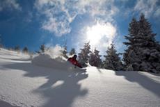 Jazda na nartach Free Ride