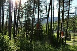 Lanový Park Terchová 32