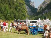 Kultúrne a športové podujatia v Terchovej